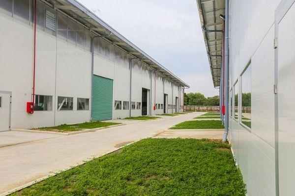 Tối ưu chi phí xây dựng nhà xưởng bằng vật liệu nhẹ