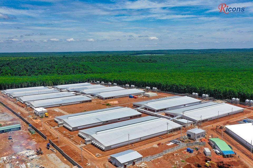 Trang Trại NEWHOPE Bình Phước